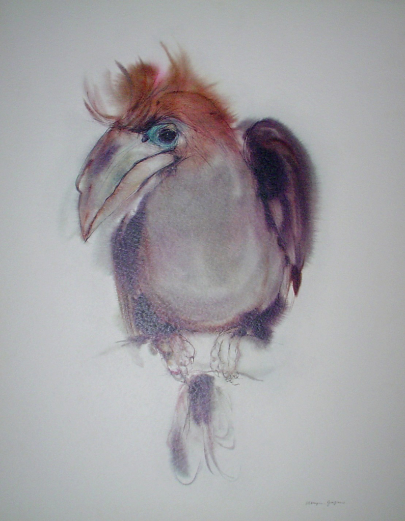 """""""Clubbed Hornbill Bird"""", in German: """"Keulenhornvogel"""" by Klaus Meyer Gasters - vintage 1970's/1980's offset lithograph reproduction watercolour collectible fine art print (size approx. 15 x 18.5 inches/ ca 38 x 47 cm) - KerrisdaleGallery.com"""