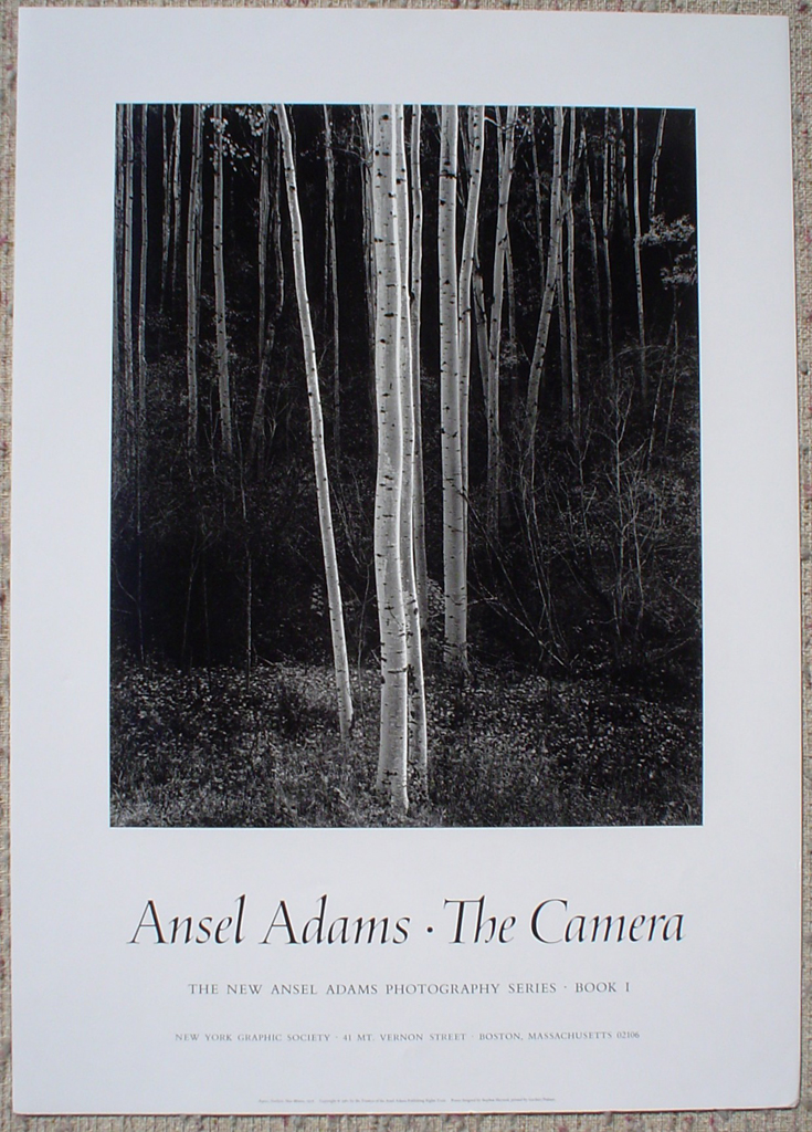 Aspens Northern New Mexico by Ansel Adams, shown with full margins - offset lithograph fine art photographic poster print