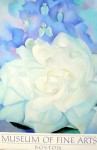 White Rose With Larkspur No 2 by Georgia O'Keeffe - offset lithograph fine art poster print