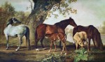 Mares And Foals by George Stubbs - collectible collotype fine art print