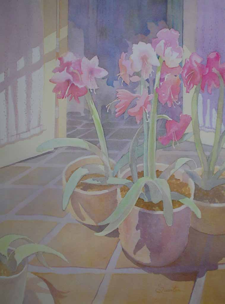 Amaryllis Pots by Lori Quarton - offset lithograph reproduction vintage fine art print