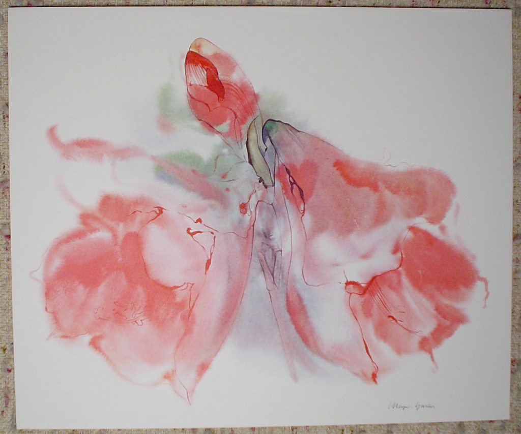 """""""Red Amaryllis With Bud"""" by Klaus Meyer Gasters, shown with full margins - vintage 1970's/1980's offset lithograph reproduction watercolour collectible fine art print (size approx. 15 x 18.5 inches/ ca. 38 x 47 cm) - KerrisdaleGallery.com"""