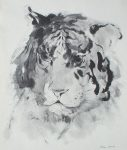"""""""Tiger Head"""" by Klaus Meyer Gasters - vintage 1977 offset lithograph reproduction watercolour collectible fine art print (size 12.5 x 10.75 inches/31.75 x 27 cm) - KerrisdaleGallery.com"""