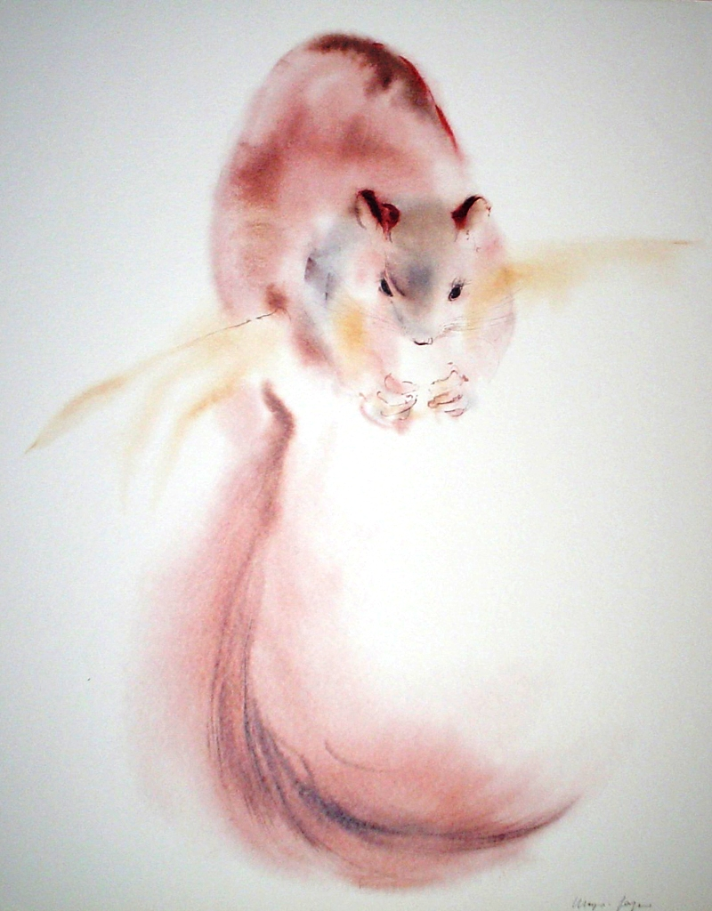 """""""Red Squirrel"""" by Klaus Meyer Gasters - vintage 1970's/1980's offset lithograph reproduction watercolour collectible fine art print (size approx. 15 x 18.5 inches/ ca 38 x 47 cm) - KerrisdaleGallery.com"""
