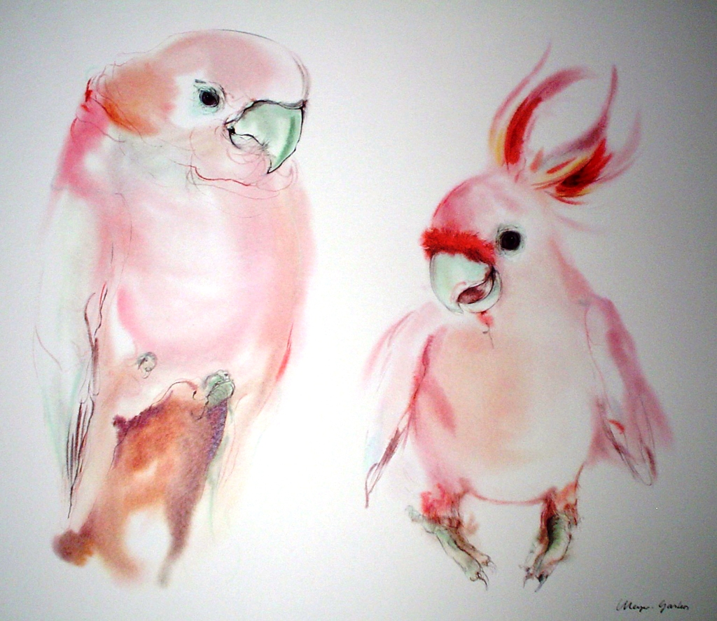 """""""Two Pink Cockatoos"""" by Klaus Meyer Gasters - vintage 1970's/1980's offset lithograph reproduction watercolour collectible fine art print (size approx. 15 x 18.5 inches/ ca 38 x 47 cm) - KerrisdaleGallery.com"""