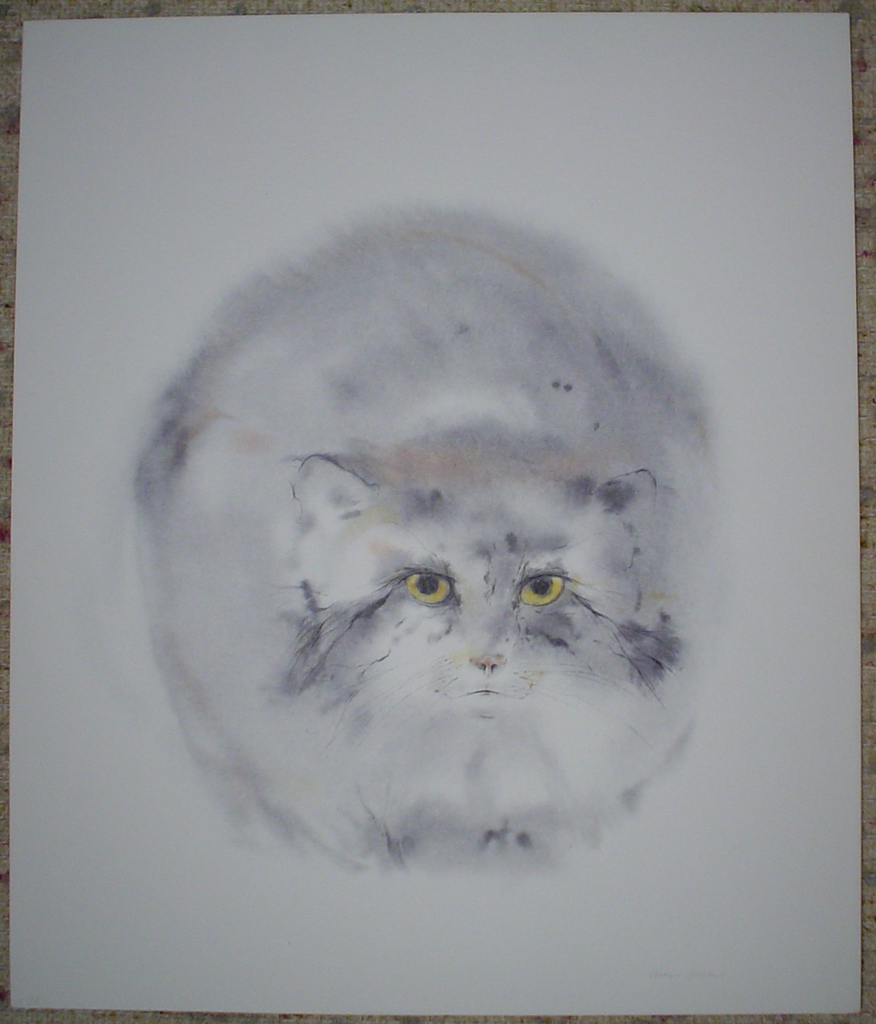 """""""Pallas Cat"""", in German: """"Manulkatze"""" by Klaus Meyer Gasters, shown with full margins - vintage 1970's/1980's offset lithograph reproduction watercolour collectible fine art print (size approx. 15 x 18.5 inches/ ca 38 x 47 cm) - KerrisdaleGallery.com"""