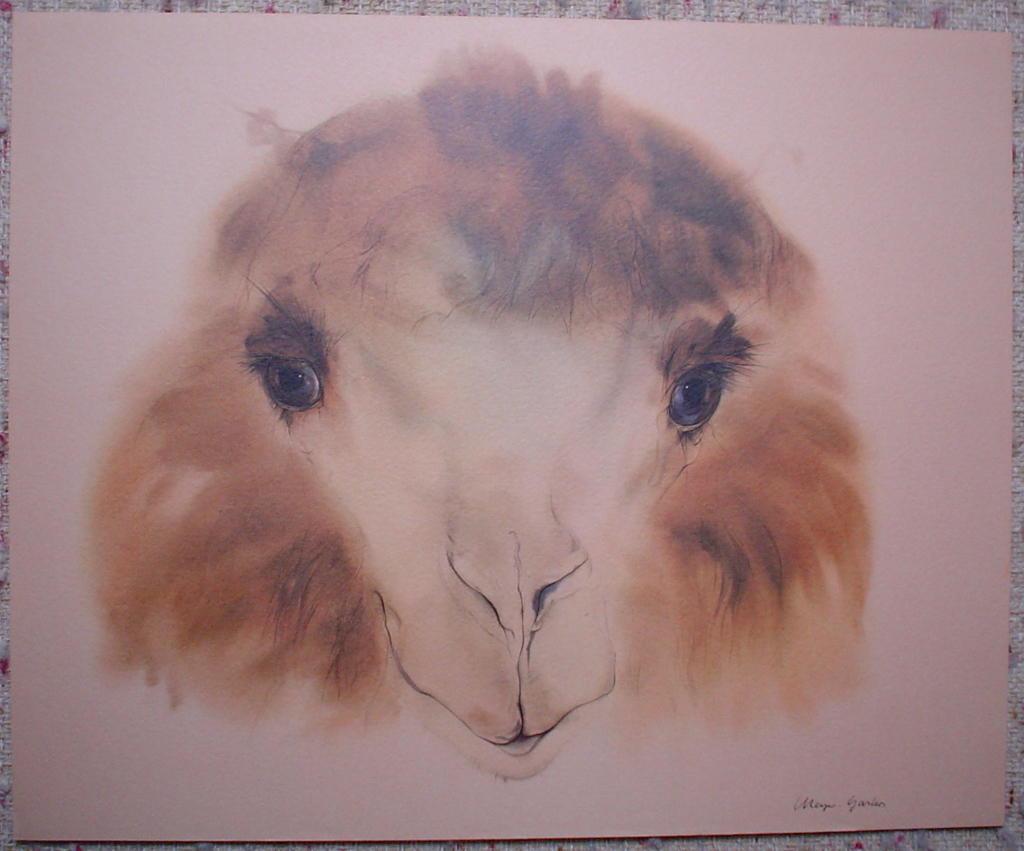 """""""Pleasant Camel"""" by Klaus Meyer Gasters - vintage 1970's/1980's offset lithograph reproduction watercolour collectible fine art print (size approx. 15 x 18.5 inches/ ca 38 x 47 cm) - KerrisdaleGallery.com"""