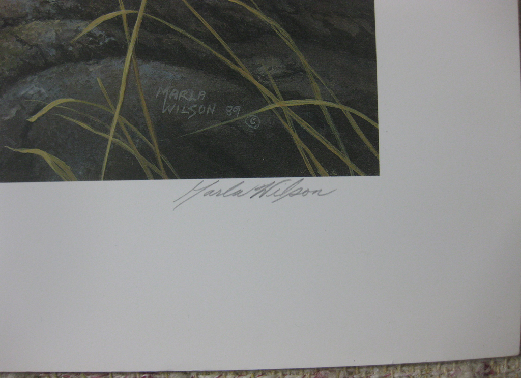 KerrisdaleGallery.com - stock ID#WM429ph-snt - Glaucous-winged Gull by Marla Wilson, detail to show signature - Limited Edition 429/695, 1989 offset lithograph; numbered, titled and signed in pencil by the artist